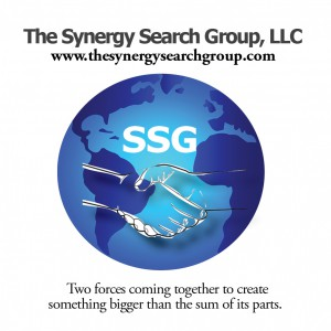 Meet Our Team   The Synergy Search Group, LLC